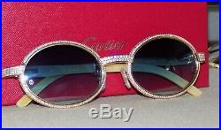 Cartier Smooth Acrylic Bezel Aqua Horn Buffalo C Décor Sunglasses Shabowhita