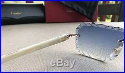 Cartier Smooth Buffalo Horn Aqua Blue Lens Pool C Décor Sunglasses